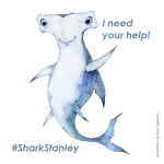 Print Shark Stanley and take a picture with him showing your support. Don't forget to tag @SharkDefenders, #SharkStanley, and the country you live (i.e., #USA).