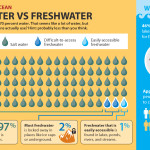 Saltwater vs. Freshwater: Why droughts are a real problem