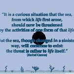 Wednesday Wisdom: Rachel Carson