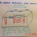 "Do water molecules ""surf"" the waves?"