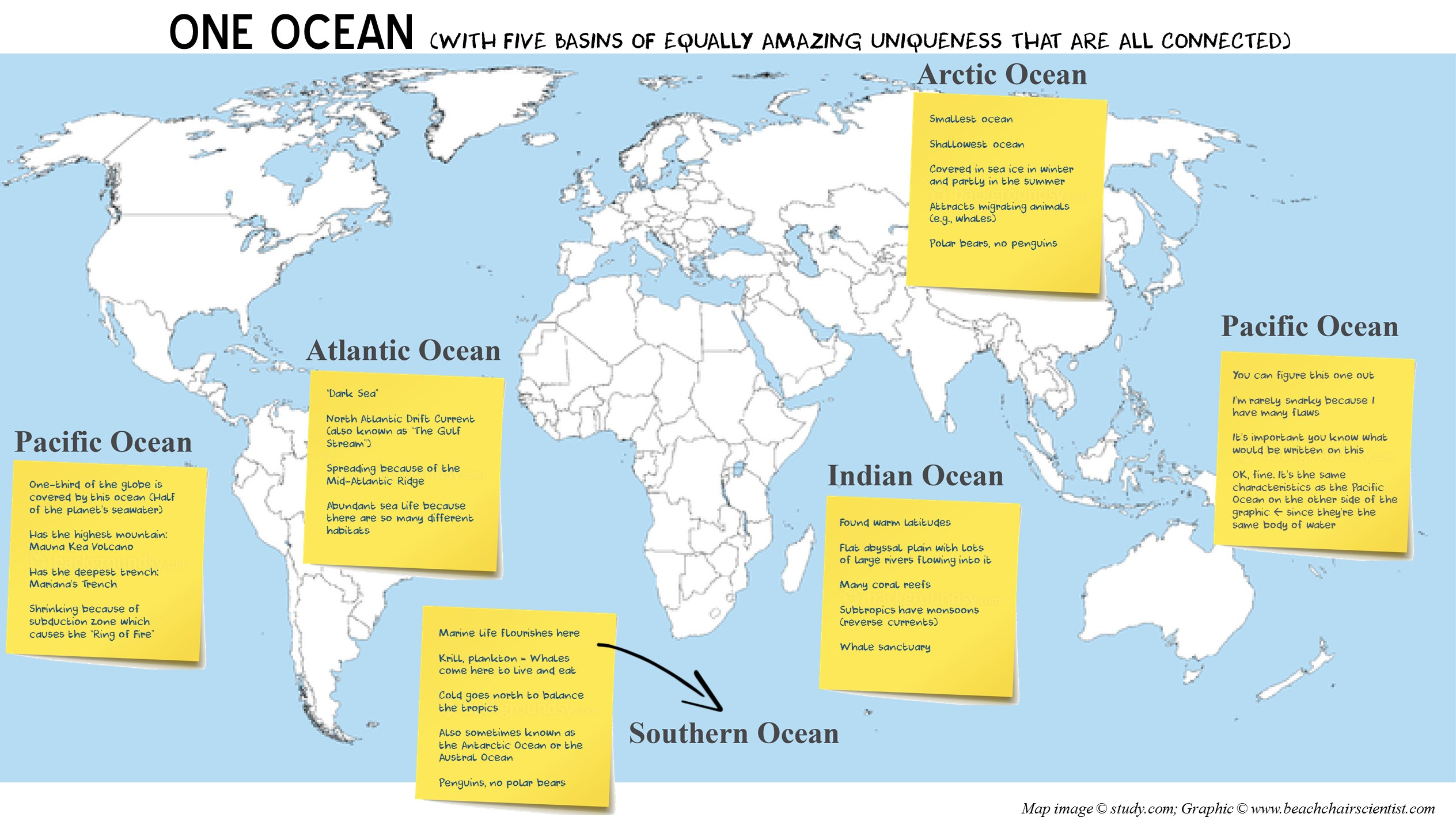 What Makes Each Ocean Unique - How many oceans in the world